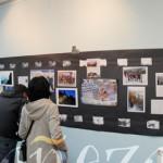 Parte de la exposición sobre los 20 años del Club de Montaña Teleno.