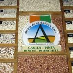 Algunas de las variedades de alubias amparadas por el sello de calidad IGP Alubia de La Bañeza-León.