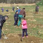 Los niños plantaron su árbol ayudados por miembros del equipo de Gobierno y trabajadores municipales.